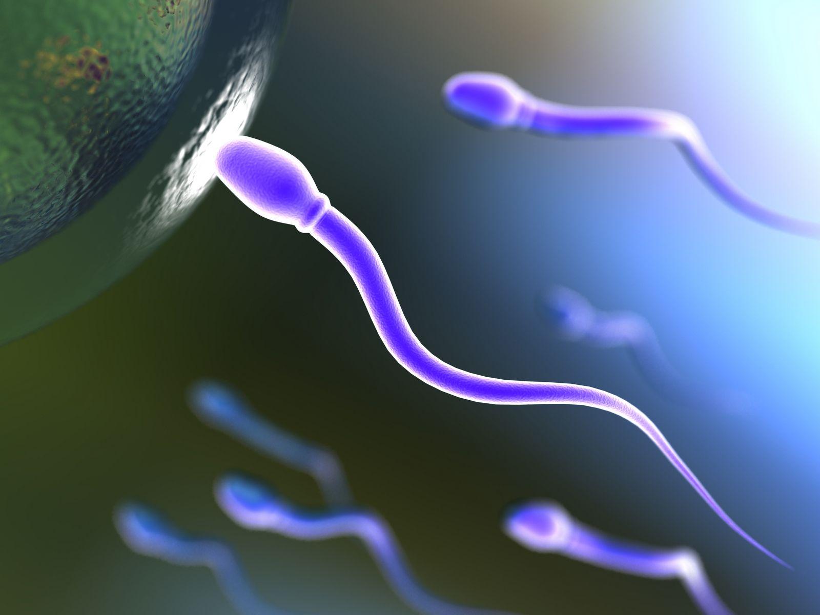 madres solteras + infertilidad