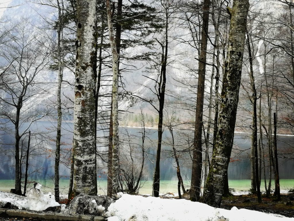 Eslovenia. Lago Bohinj