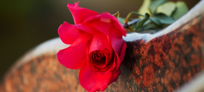 Madres solteras + la muerte de un amigo
