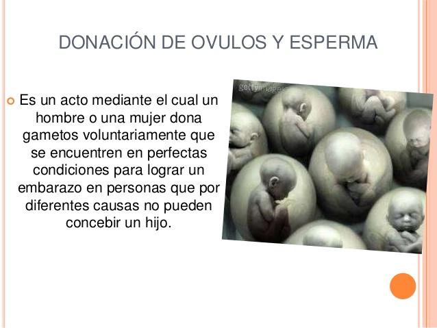 Donantes de esperma y óvulos