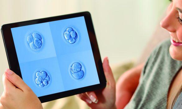 Reproducción Asistida: Observar embriones en dispositivos
