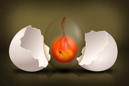 Infertilidad y transferencia en día 5